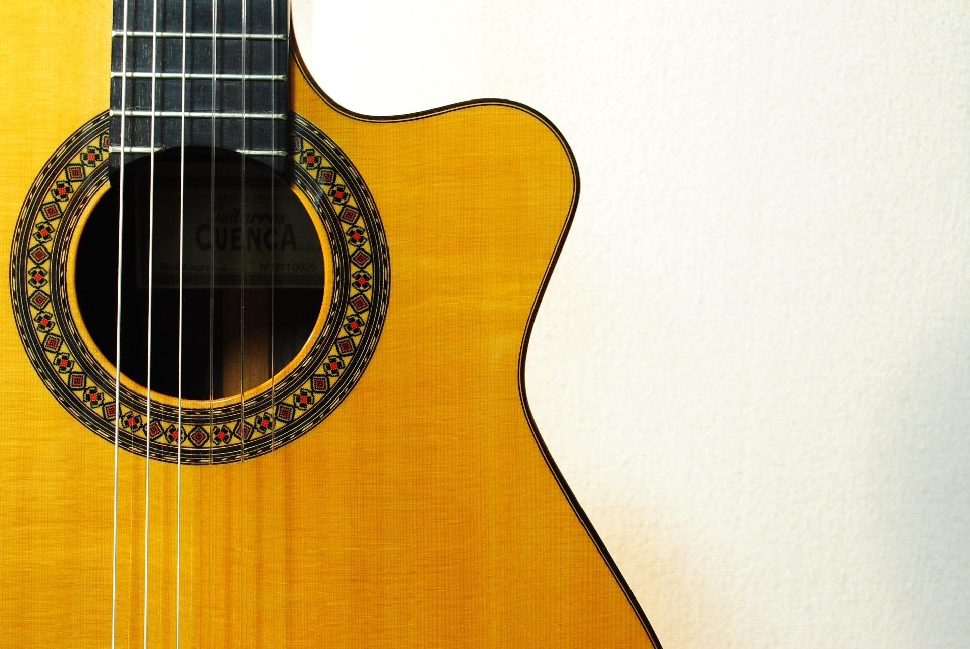 エレガットギターの買取相場